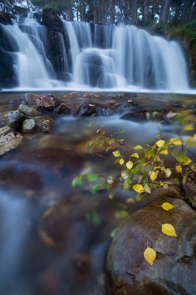 """""""Autumn fall"""""""