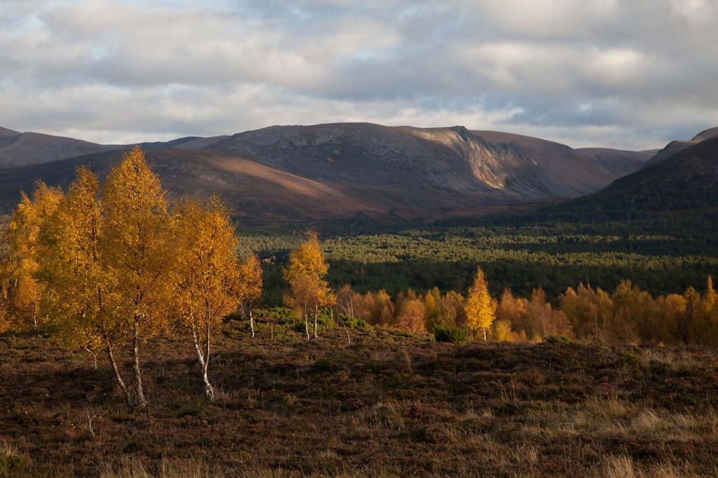 Light on the Lairig