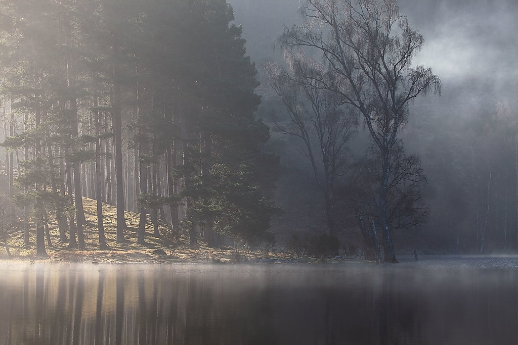 A Light touch, Loch Pityoulish