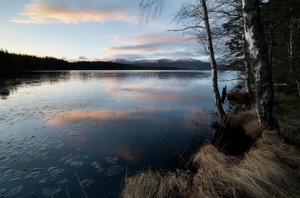 Reflecting on Winter